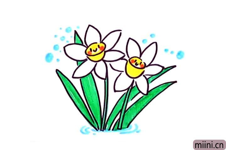 花一朵漂亮的水仙花