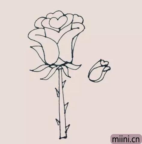 好看的玫瑰花