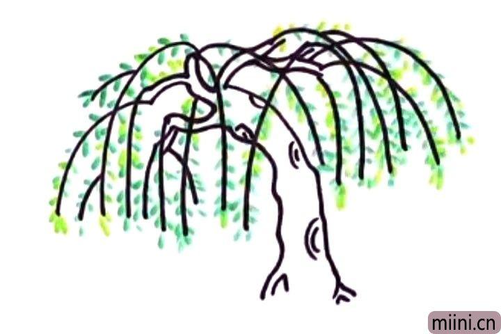 5.用绿色和嫩绿色画出柳树叶。