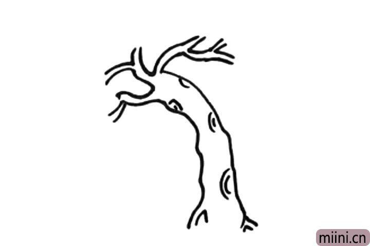 3.然后画出树皮的纹理。