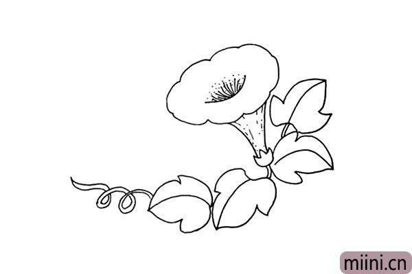 8.在叶子的旁边画上一根螺旋形的引蔓。