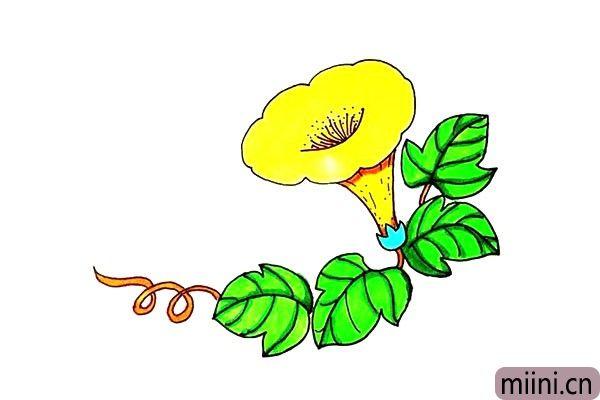 10.最后我们把画好的喇叭花涂上漂亮的颜色吧。