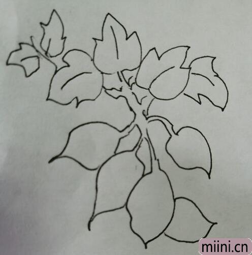 简笔画红薯12.jpg