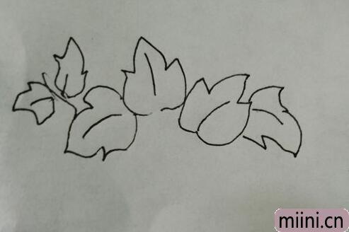 简笔画红薯07.jpg