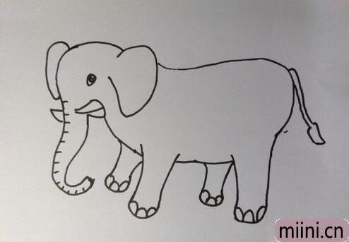一只憨憨的大象简笔画步骤教程