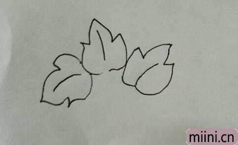 简笔画红薯05.jpg