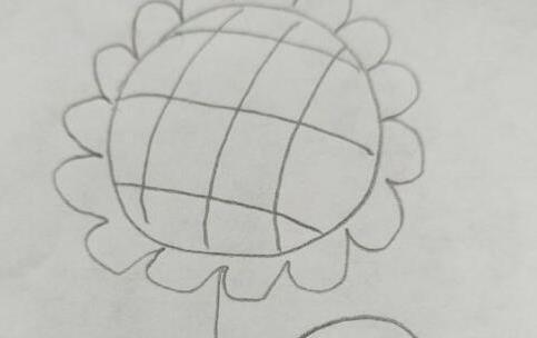 简单的向日葵太阳花简笔画步骤教程