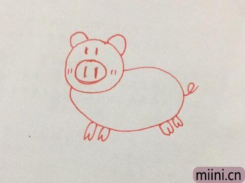 小猪简笔画01.jpg