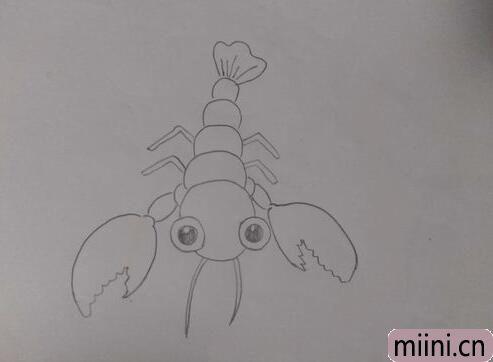 龙虾简笔<a href=http://www.miini.cn/hhds/ target=_blank class=infotextkey>画</a>01.jpg