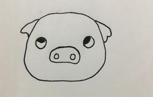 笨笨的小猪简笔画步骤教程