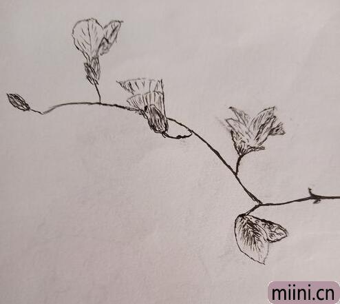 立春简笔<a href=http://www.miini.cn/hhds/ target=_blank class=infotextkey>画</a>01.jpg