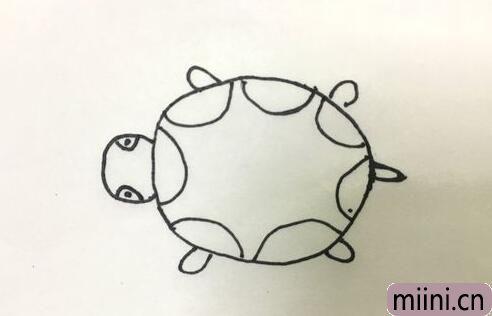 乌龟简笔画06.jpg