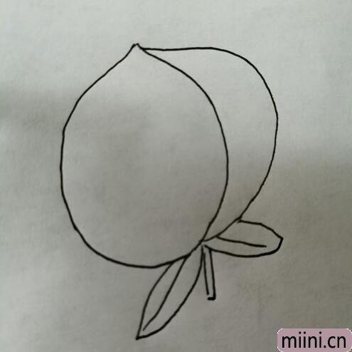 简笔画桃子09.jpg