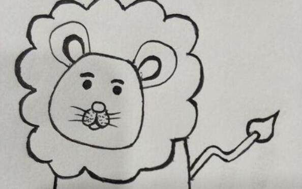 非洲草原上的霸主雄狮子简笔画步骤教程