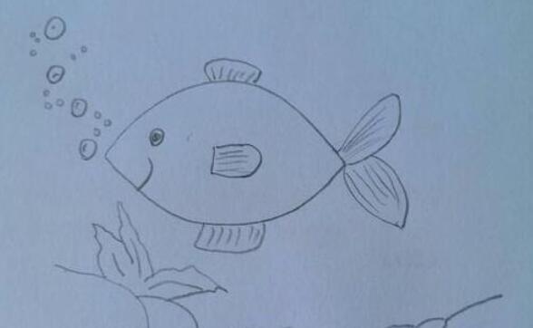 正在吐泡泡的鱼简笔画步骤教程