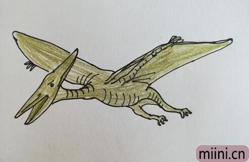 飞翔的远古生物,翼龙简笔画步骤教程
