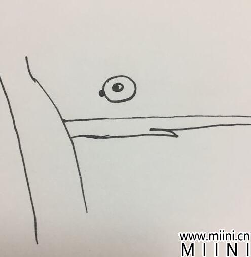 小松鼠简笔画04.jpg