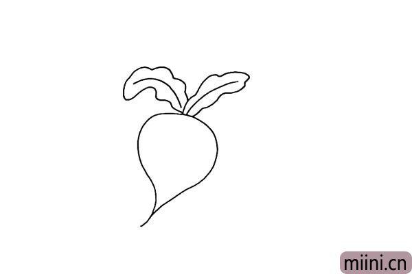 3.用同样的方法在画上一片叶子.这片叶子也是下垂的。