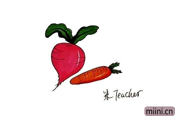 8.最后我们给画好的萝卜涂上漂亮的颜色吧。