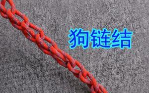 狗链结,这是货运司机不外传的绳结技能