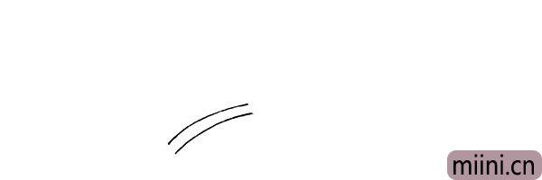 1.首先用两条并排的弧线画出百合花的茎。