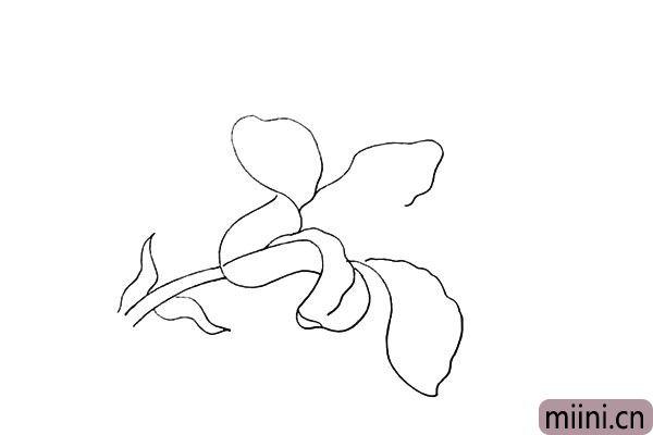 6.然后用不规则的曲线画出中间和下方的花瓣。