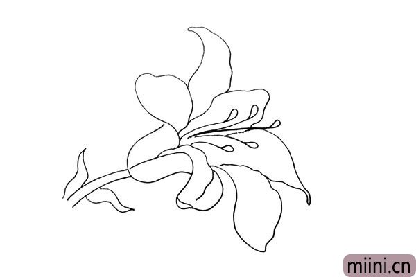 9.在花朵的中间画出一个雨滴的形状是它的花蕊。
