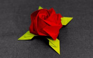 少见的原配的花萼川崎玫瑰折纸步骤