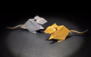 鼠年要来啦,折纸小老鼠搞起来
