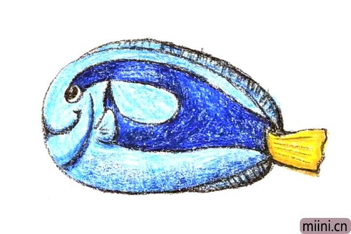 黄尾副刺尾鱼简笔画步骤教程