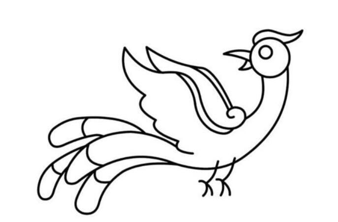 鸟种之王吉祥的象征凤凰简笔画步骤教程