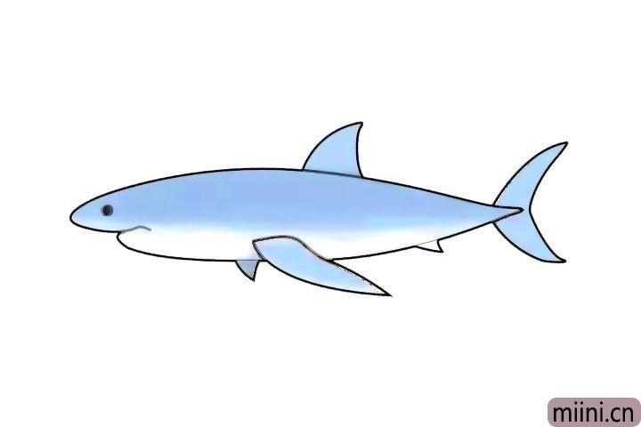 海洋霸主大白鲨简笔画步骤教程