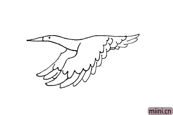 第七步:尾部的羽毛也用同样的画法,注意要画两层。