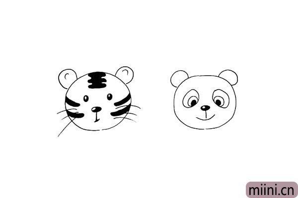 第十二步:接着再画出熊猫的圆耳朵.注意位置。