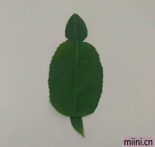 树叶做乌龟06.JPG