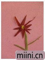 树叶小红花05.JPG