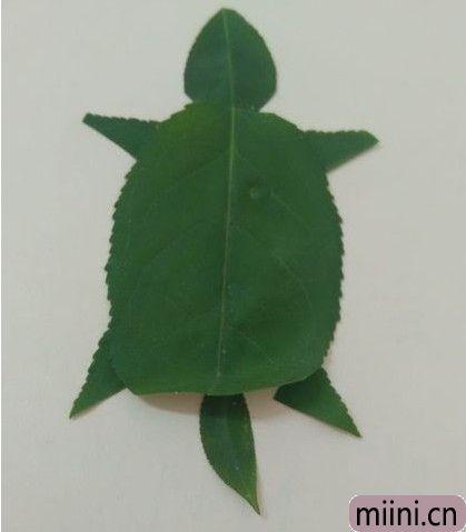 树叶做乌龟08.JPG
