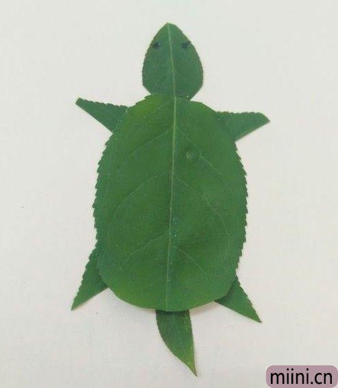树叶做乌龟10.JPG
