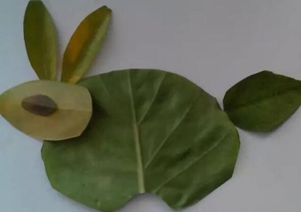 非常简单的小兔子树叶贴画步骤教程