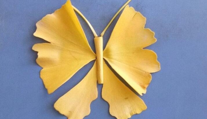用银杏叶做一个好看的蝴蝶树叶贴画步骤教程