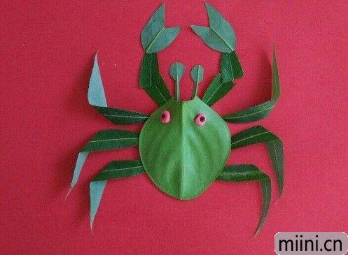 树叶螃蟹05.JPG