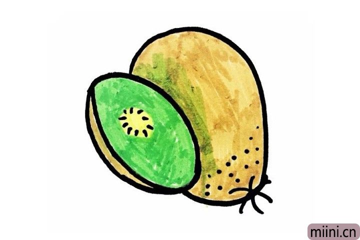 7.最后我们给它涂上好看的颜色,猕猴桃就画好了。注意猕猴桃的皮是棕色的它的果瓤是绿色的呦!