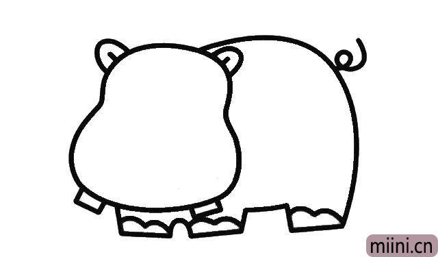 3.再画出河马壮壮的身体, 要有粗壮粗壮的感觉。 别忘了还有一条弯曲的小短尾巴。