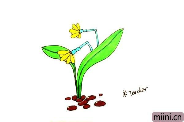 第九步:最后我们把画好的水仙花涂上漂亮的颜色吧。