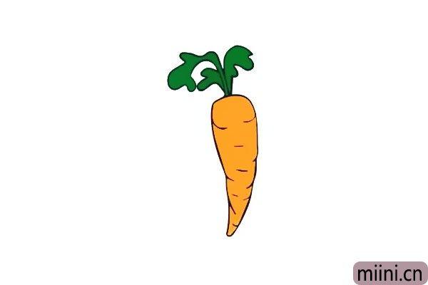 营养富丰嘎嘣脆的胡萝卜简笔画步骤教程