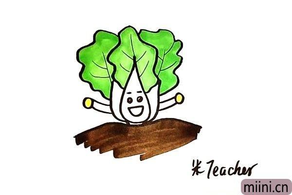 卡通白菜简笔画步骤教程