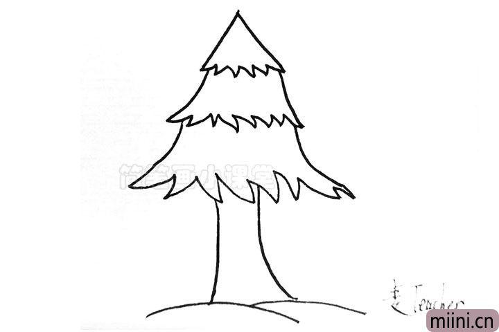 4.画出松树粗壮的树干。