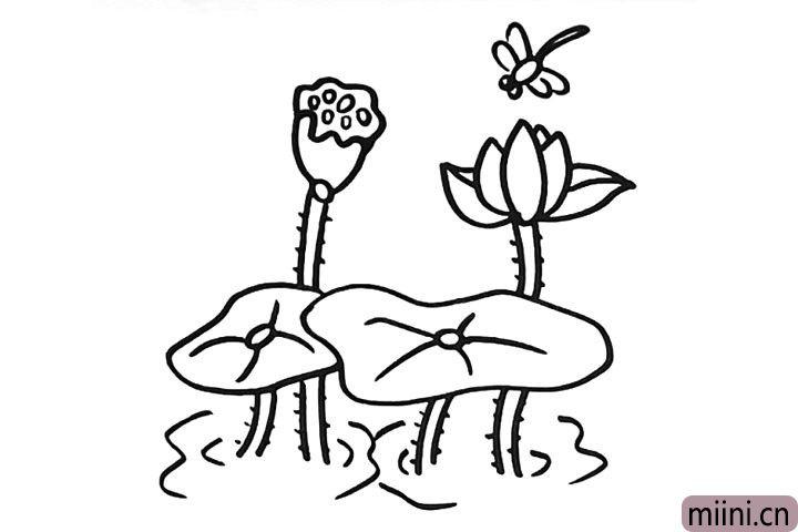 8.在荷花的上面画一只小蜻蜓.下面画一些水波纹。