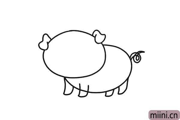 2.多余的部分用橡皮擦掉。小猪的尾巴画上两条曲线作为。四条腿,又短又粗壮。