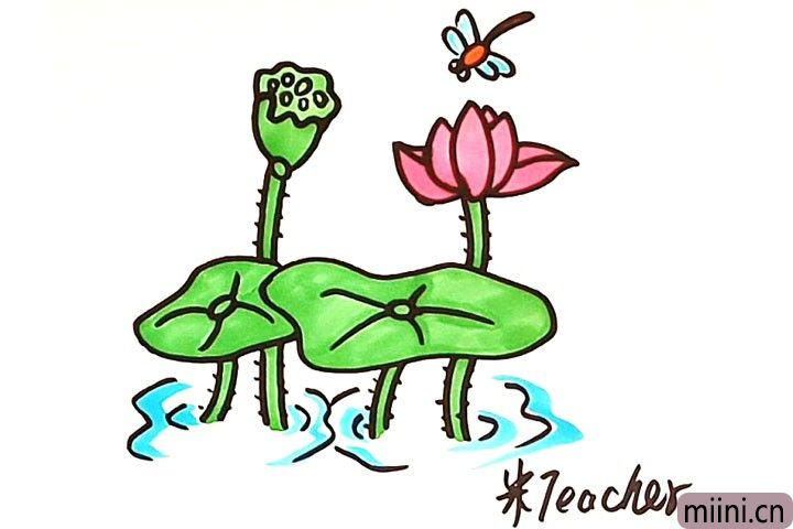 蜻蜓荷花风景简笔画步骤教程